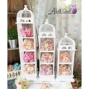 birdcage shelves